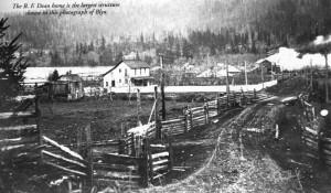 photo of Blyn Washington, circa 1900